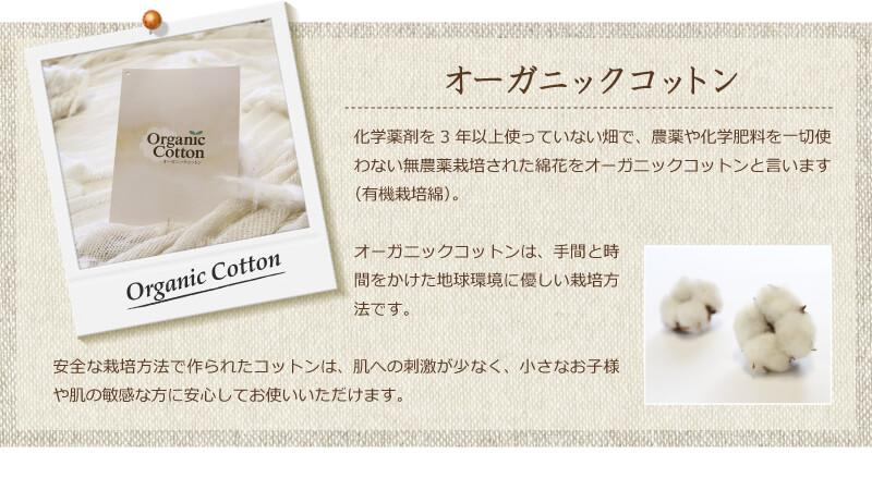オーガニックコットン綿